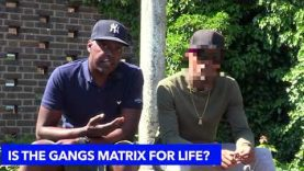 THE GANGS MATRIX IS AFFECTING SO MANY YOUNG BLACK MEN?